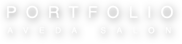 Portfolio Salon logo