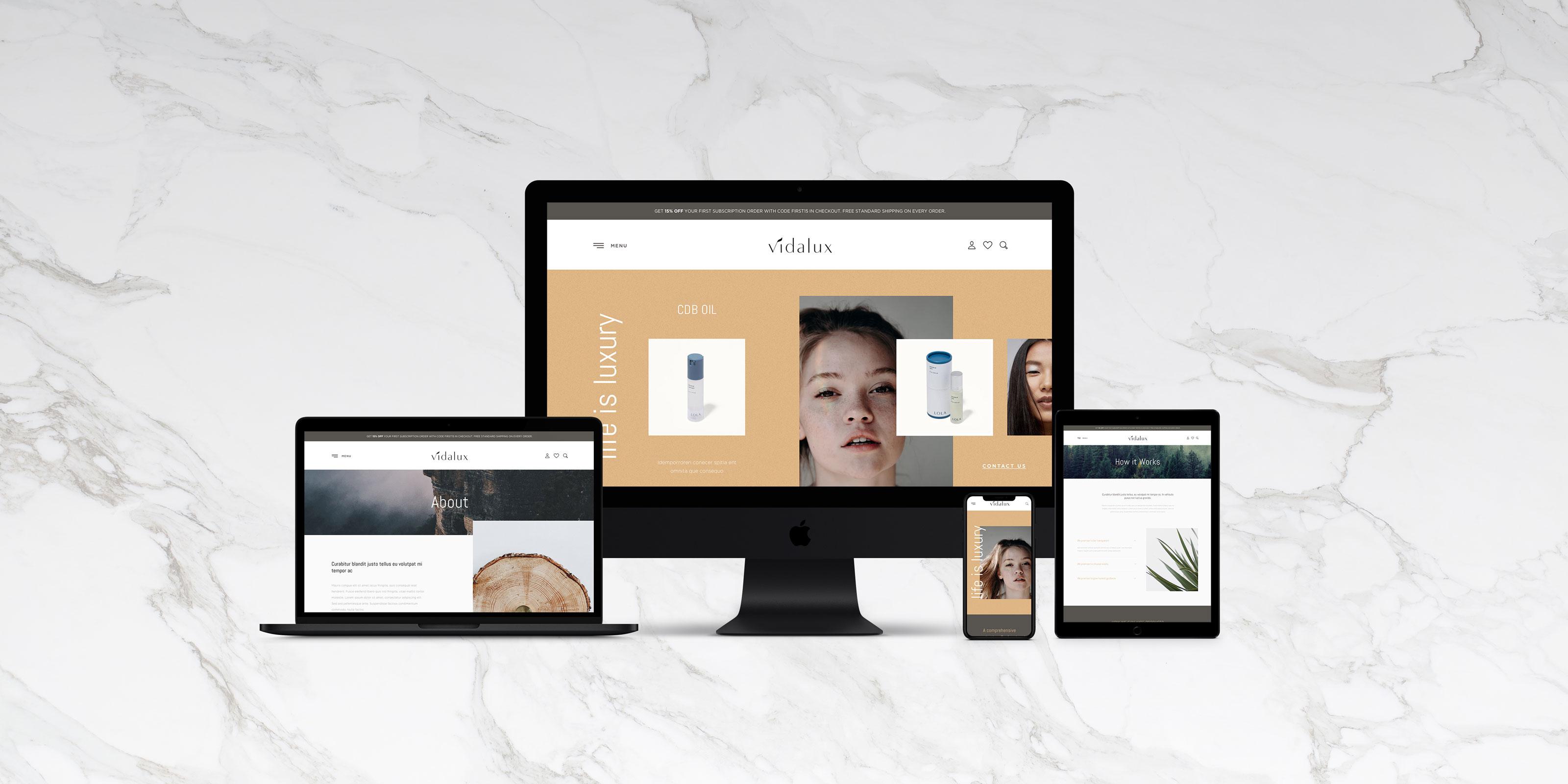 vidalux-website-mockup