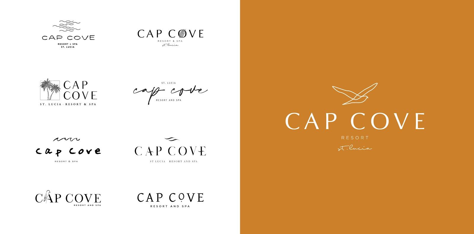 Cap Cove - Brand Collective 3
